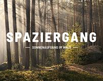 Spaziergang × Sonnenaufgang im Wald