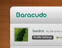 Baracuda social app draft [y/2008]