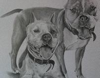 Graphite drawing. Fabriano paper 100x70cm
