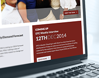 Doyle Trading Consultants Website