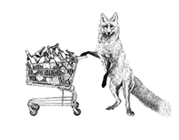 Redraw: Fox at the Supermarket 10 years later