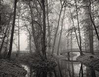 Studie parku Veltrusy