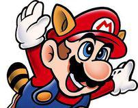 Making Sense of Mario Bros.