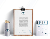 BRINT - Brand International. Identidad Corporativa