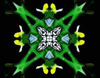 Kaleidoscopic Journey 1 : Green with Envy