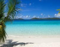 Barbados Blog