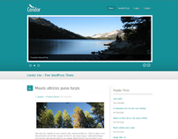 Condor-Lite – Free WordPress Theme