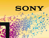 Sony OutDoor