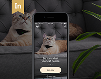 Moggie Mobile App For Cats. Product Design.