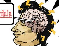 Psychology - Amygdala