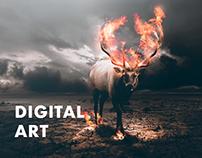 Digital Art 2016-2017