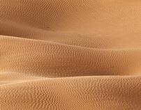 JEBIL NATIONAL PARK - SAHARA DESERT  -  TUNISIA