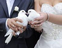 Wedding Irina & Anton