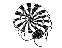 Centipede Illustration