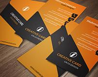 Online portfolios on behance creative vertical business card reheart Gallery