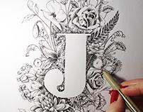 Illustration logo Jacinthe