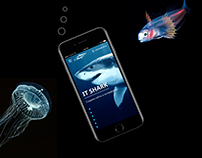 IT Shark website design concept