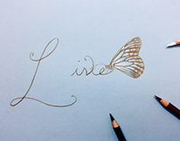 Live and Love Elegant, Simple and Delicate Word