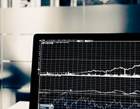 Stock Market Jargon | Michael Shustek