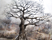 Winter Tree-Watercolor