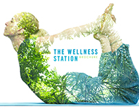 The Wellness station brochure