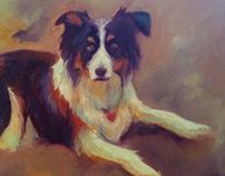 Pet Portrait | Roxy