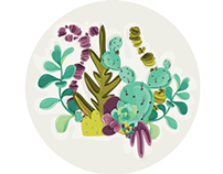 Mis Cactus