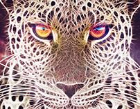 Galaxy Jaguar