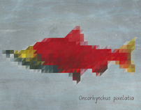 Pixel Scales Salmon