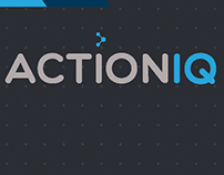 ActionIQ brand styleguide