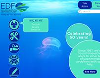 EDF Website Redesign