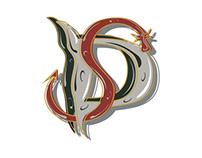 Imagen de marca - Dragones del Sur