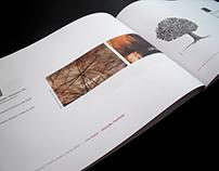 Exhibition catalogue | Aveiro Jovem criador 2007