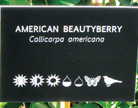 Engraved Plant Labels