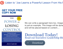 Caruso Leadership User Experience Design