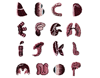 Broderie : Alphabet Organic.