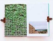 FINE ART: Invisible Green