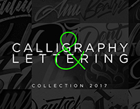 Calligraphy&Lettering 2017