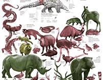 China's wildlife trade