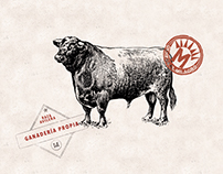 Organic Beef · DEM