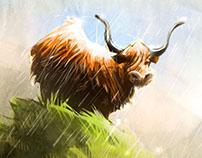 Highland Cow Sketch