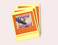 Coney Island neighborhood booklet