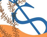 Icon Design: Money Lost with the Shipwrecks