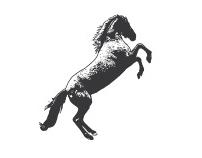 THE SUGAR HORSE