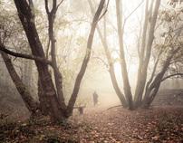 Autumn Fantasy