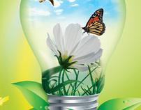 Environment - Medio Ambiente