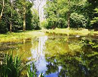 Large pond maintenance