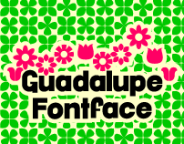 Guadalupe FF
