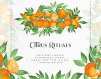 Citrus Rituals