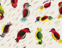 Birds & more patterns